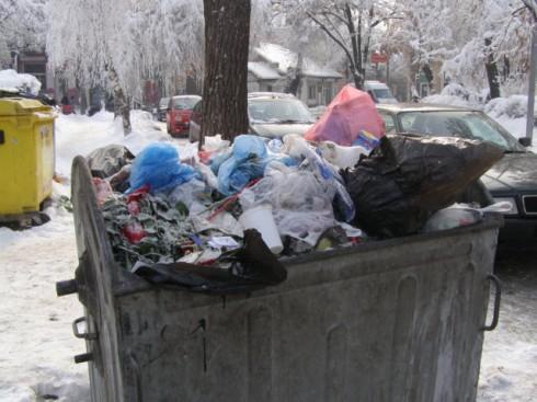 Видин потъна в боклуци
