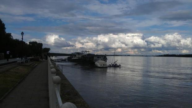 Веселина Кавръкова, програмен директор на WWF-България: В различните участъци на река Дунав, са разселени близо 51 000 малки есетрови рибки