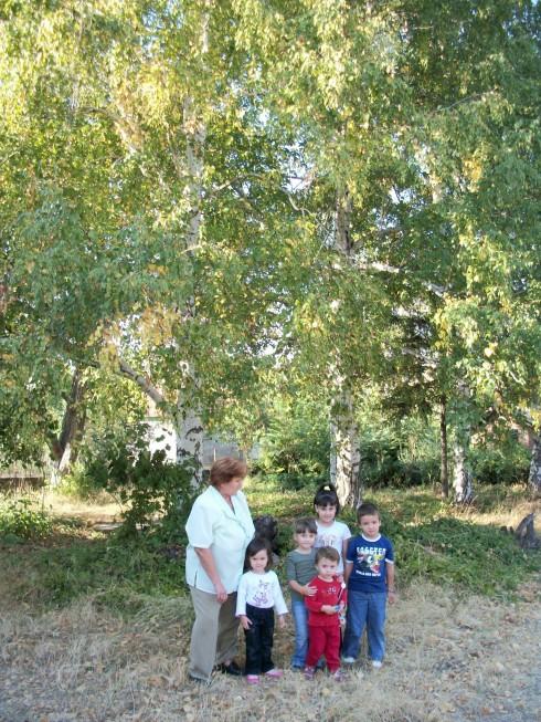 "Детската градина е наречена така заради големите брези в двора и. Под сянката им Владимир Тошев си поигра с малчуганите от детска градина ""Брезичка""."