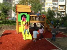 12 са приемните семейства във Видин