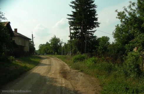 Фирми изкупуват горите на дребни собственици от видинско село за добив на дървесина