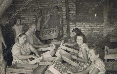 """снимка от """"Шопрона""""- до гарата - тук са се редили домати , плодове, зеленчуци и др. за товарене в щайги във вагоните. Тук годината е началото на 60-те"""