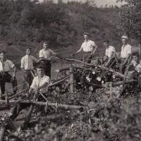 младежи събират дърва за огрев на училището в с. Скомля